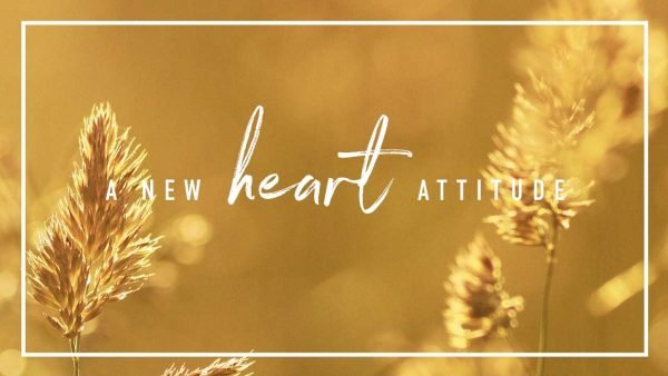 A New Heart Attitude