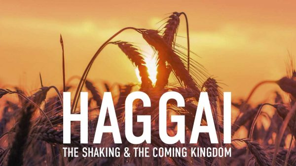 Haggai: The Shaking and the Coming Harvest