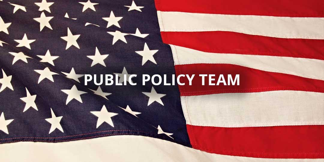 Public Policy Team